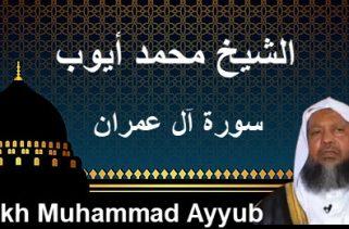 Cheikh Muhammad Ayyub الشيخ محمد أيوب سورة أل عمران